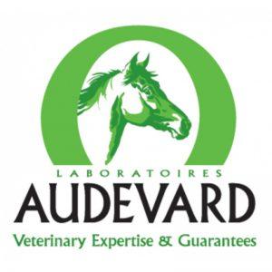 dressurtage-sponsor-audevard_squ